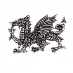 Dragon Broche